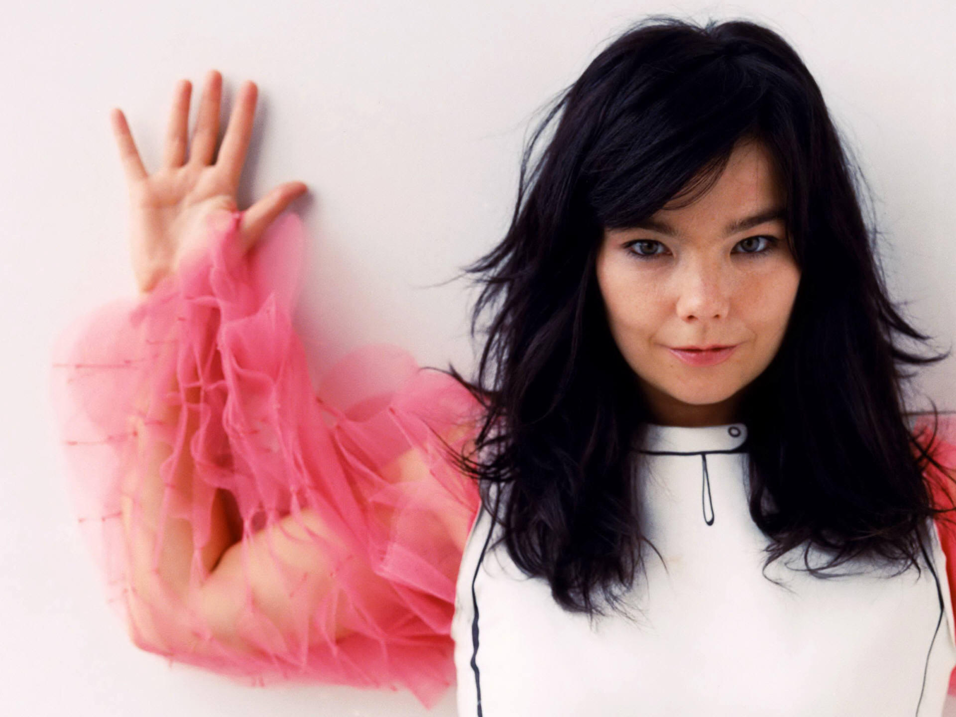 singer/songwriter Bjork